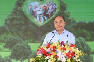 Đoàn Cơ sở VQG Phong Nha - Kẻ Bàng tổ chức trồng cây xanh phục hồi rừng